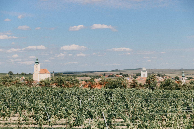 Der Blick vom Weingarten auf Röschitz ist herlich