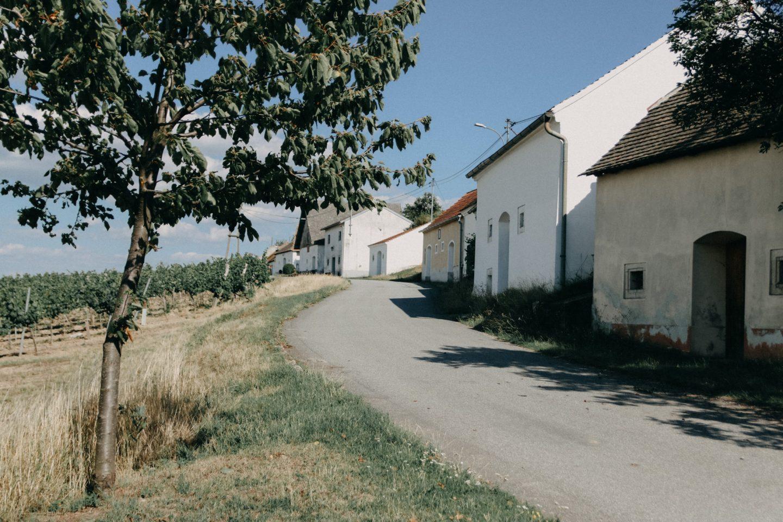 Kellergasse entlang der Weingärten von Wartberg