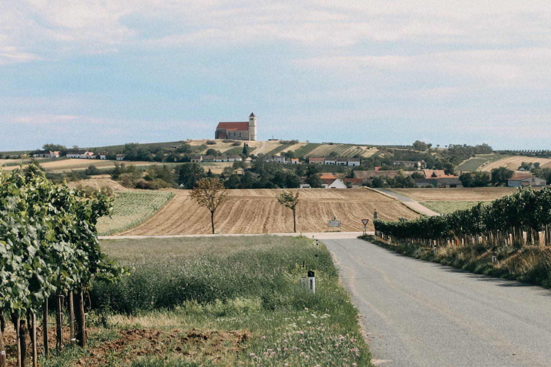 Eine tolle Aussicht in alle Richtugen des Weinviertels hat man vom Wartberg mit seiner schönen Kirche
