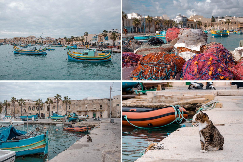 Hafen von Marsaxlokk mit Palmen, Fischernetzen und bnten Fischerbooten. Katze wartet geduldig auf Fische.