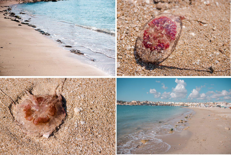 Strand bei Marsaxlokk mit Quallen