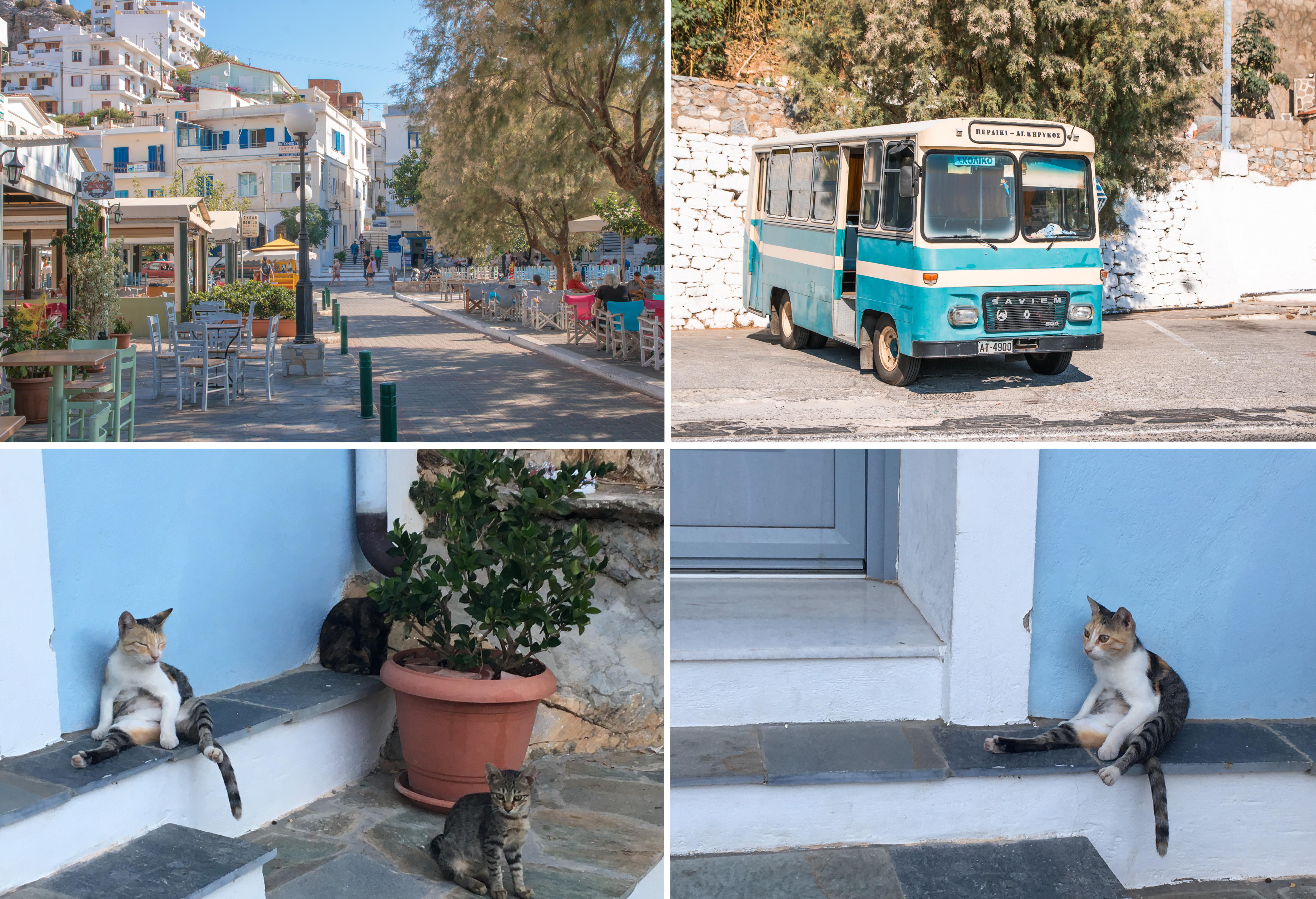 Ikerias Hafenort Agios Kirykos hat eine nette Promenade mit schönen Tavernen und Cafes - und fotogenen Katzen